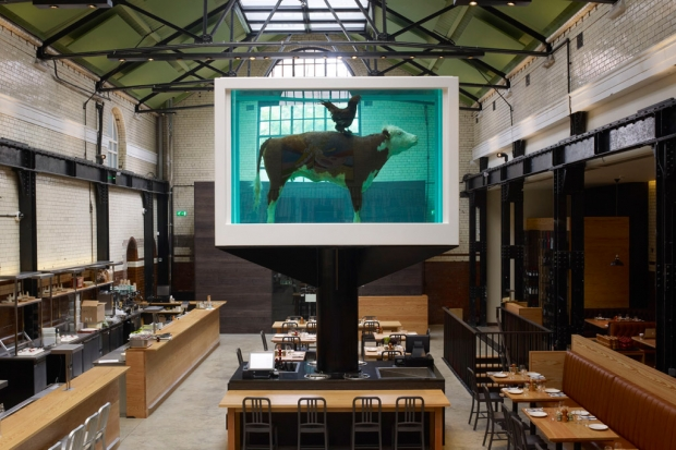 damien-hirts-cock-and-bull-tramshed-restaurant-1-620x413