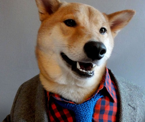menswear-dog-tumblr-02