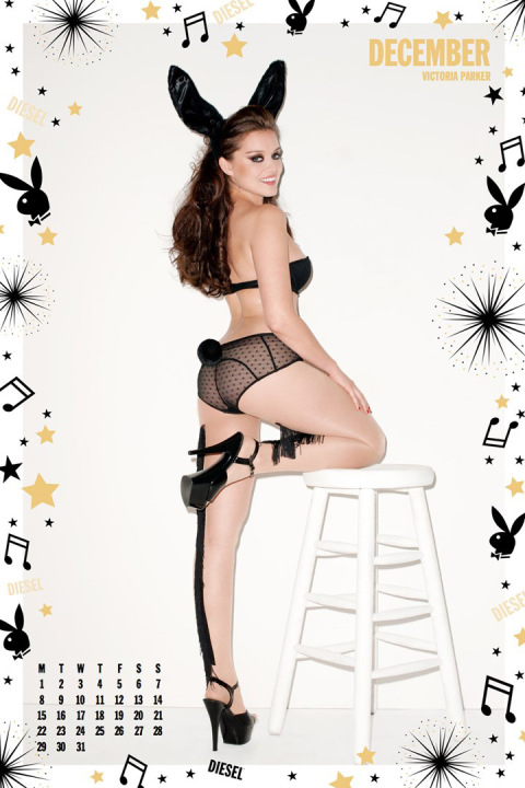 diesels-2014-calendar-by-terry-richardson-11